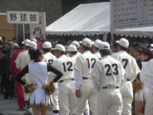 早稲田大学野球部