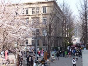 早稲田大学の新入生のためのサークル勧誘