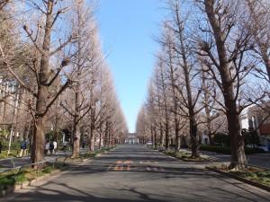 慶応義塾大学日吉キャンパス