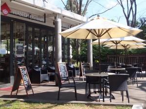 大隈講堂横のカフェ