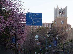 早稲田に春がやって来た。