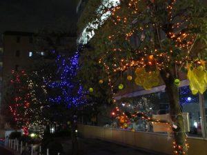 早稲田大学22号館前のイルミネーション