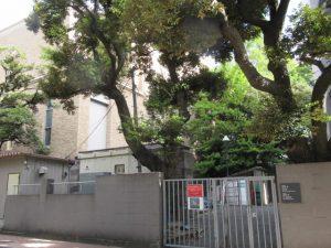 早稲田演劇の地(大隈講堂裏)